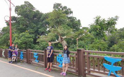 台中包車旅遊-天空橋
